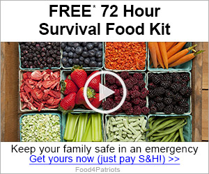 Free Survival Food